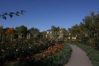 Petřín - zahrady