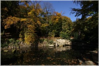 Petřín - zahrada Kinských jezírko s Lachtanem