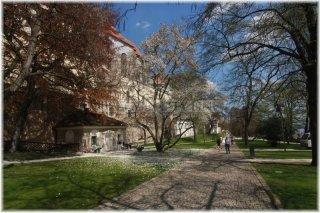 Pražský hrad - zahrada Na Valech