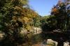 Petřín - rybníček s lachtanem v zahradě Kinských