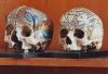 Praha 2 - Hrdličkovo muzeum člověka