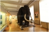 pha1-narodni-muzeum110402_006