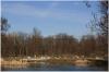stromovka-110324_040