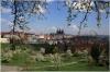 Petřín - Strahovská zahrada