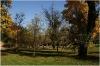 Petřín - zahrada Kinských