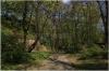 Petřín - zahrada Kinských  - cesta k pískovcovým skalám