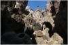 Praha 2 - Havlíčkovy sady(Grebovka) - Grotta