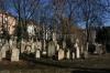 Starý židovský hřbitov na Žižkově_015