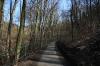 Divoká Šárka - cesta údolím