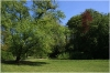 Královská obora - Stromovka