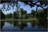 Královská obora - Stromovka - jezírko s fontánou
