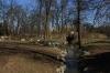 Královská obora - Stromovka - potůček