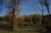 stromovka-110324_020