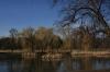 Královská obora - Stromovka - jezírko