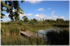 Pražský hrad - Produkční zahrady, rybník