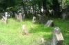 Starý židovský hřbitov3