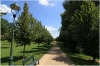 Praha 6 - park pod Břevnovským klášterem