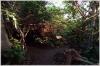 Praha 7 - Zoologická zahrada - Indonéská Jungle