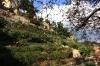 praha-1-mala-palffyovska-zahrada0909