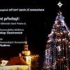 Slavnostní rozsvícení břevnovského vánočního stromu
