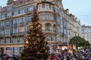 Rozsvícení vánočního stromu na Strossmayerově náměstí