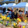 Jarní trhy