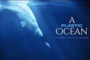 Filmu ¨A Plastic Ocean¨ pod záštitou Greenpeace ČR