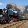 Křivoklátský expres - parním vlakem na Křivoklát