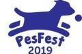PesFest 2019