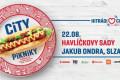 City piknik | Jakub Ondra a Slza