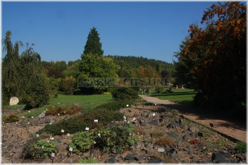 Botanicka zahrada Troja110927_005