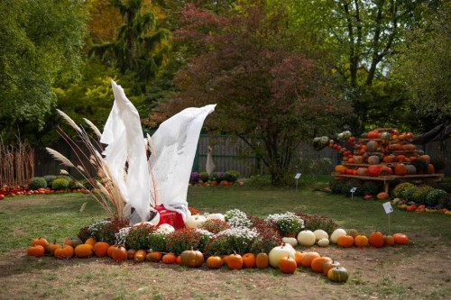 HalloweenTroja