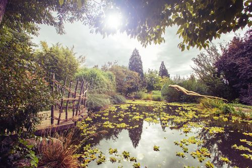 Leto v Botanicke zahrade01