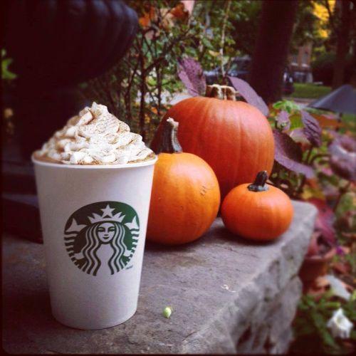Starbucks Halloween čl