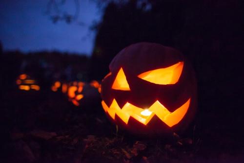Halloween v Botanicke zahrade
