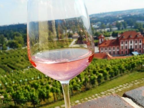 Trojske vinobrani1